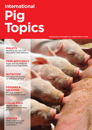 International Pig Topics