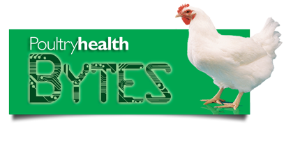 Poutry Health Bytes Logo